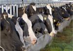 Acuicultura, agricultura y ganadería